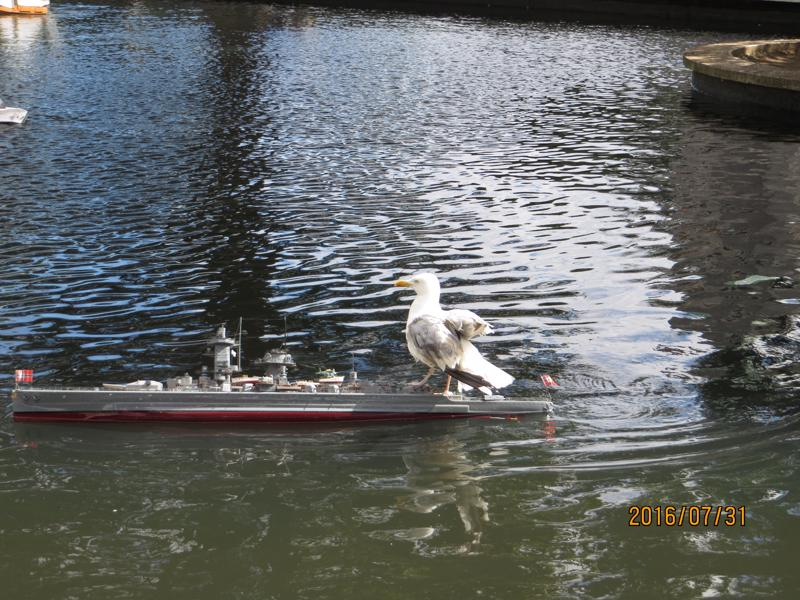 Graf Spee -with stowaway!!